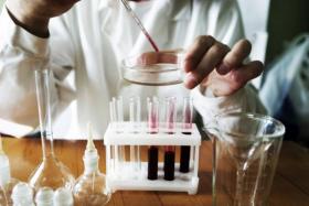 Расшифровка биохимии крови