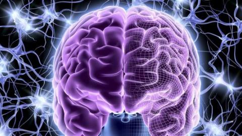 Енцефалопатия головного мозга: что ето такое, лечение