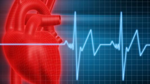 Сердечные сокращения