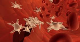 Тромбоцитопения в крови