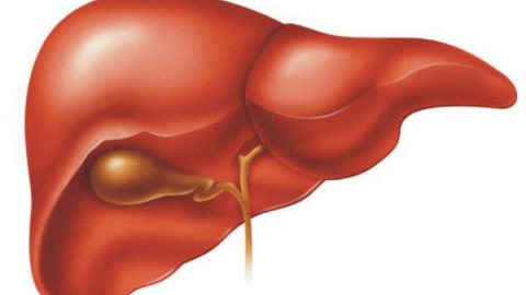 Печеночная энцефалопатия: что это такое, симптомы, лечение